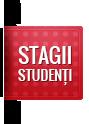 Stagii studențești