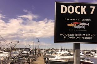 alfredo-dock