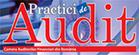 practici-audit